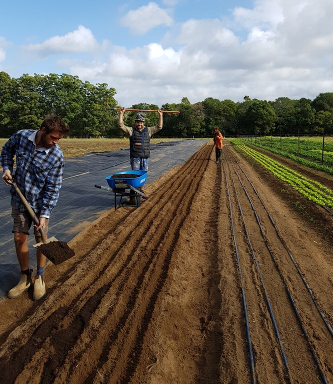 20180514_Spreading compost before planting.jpg