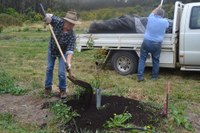 Compost demonstration field day