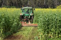 Cover Cropping Workshop, getting cover crops working on your farm