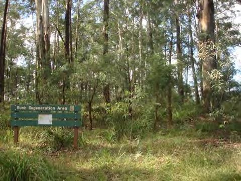 observatory park.png