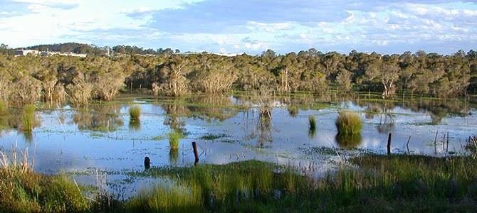 porters-creek-wyong.jpg