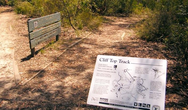 prince-henry-cliff-walk.jpg
