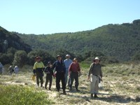 Enhancing resilience of 12 km of coastal EEC's from Smoky Cape to South West Rocks