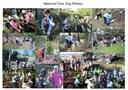 National Tree Day Photos Elizabeth Brownlee Reserve Albion Park