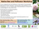Native Bee & Pollinator workshop