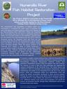 Numeral River Fish Habitat Restoration Project