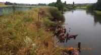 Numeralla River Fish Habitat Restoration Project