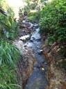 Whartons Creek