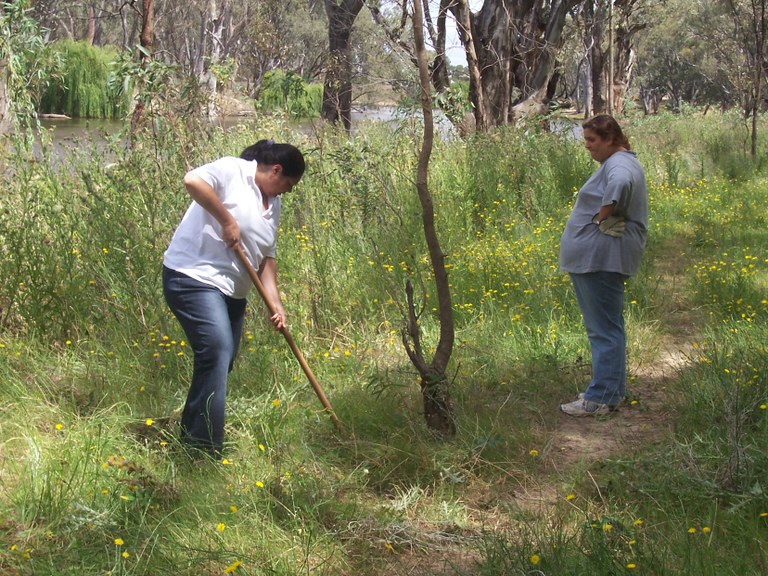 Weed control North Deniliquin Forest