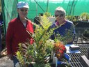 Yass Landcare Nursery plant donation to Yass Garden club